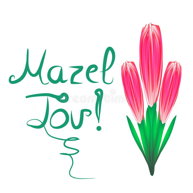 Greeting inscription Mazel Tov translated from Hebrew I wish you happiness. A bouquet of tulips. Vector illustration on royalty free illustration