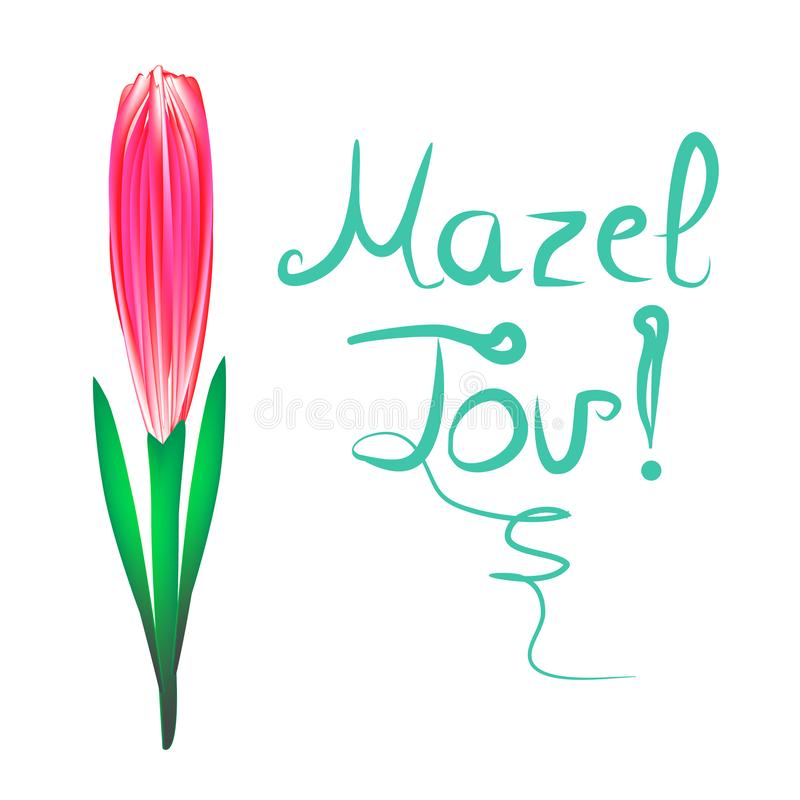 Greeting inscription Mazel Tov translated from Hebrew I wish you happiness. Tulip flower. Vector illustration on royalty free illustration