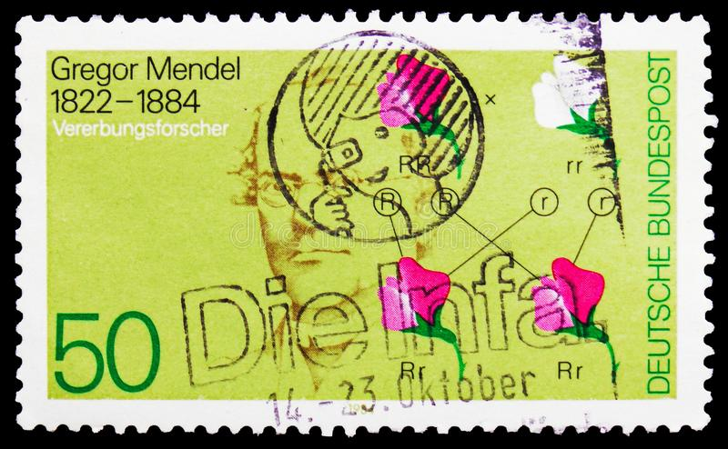 Gregor Mendel e diagrama genético, serie, cerca de 1984 imagens de stock