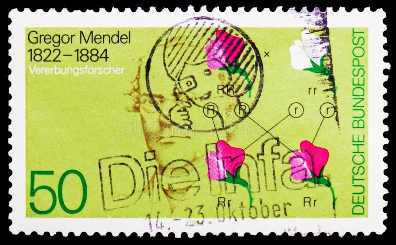 Gregor Mendel et diagramme génétique, serie, vers 1984 images stock