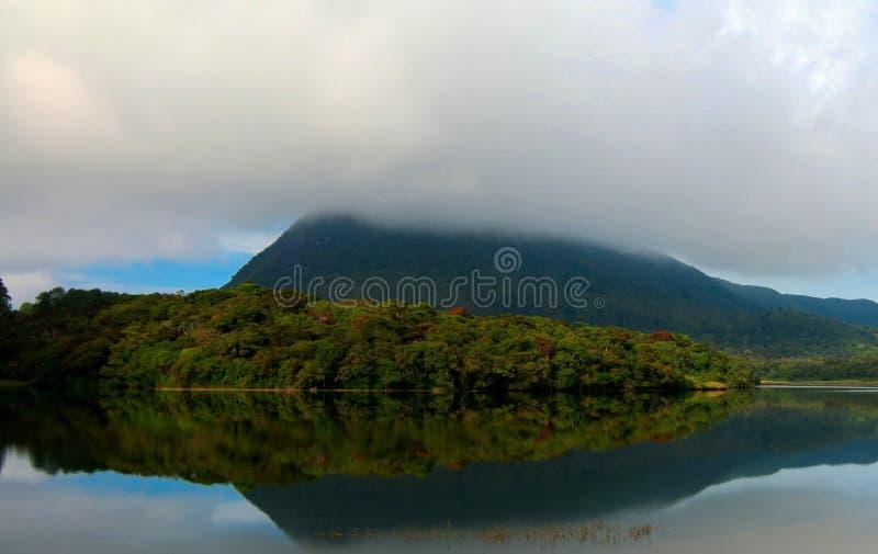 Gregory湖的反射在努沃勒埃利耶雾的 图库摄影