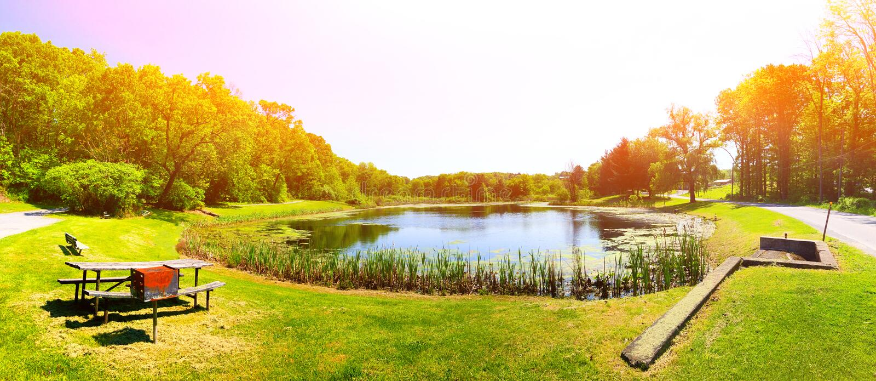 Gregory Pond Park-de zomermening royalty-vrije stock afbeeldingen