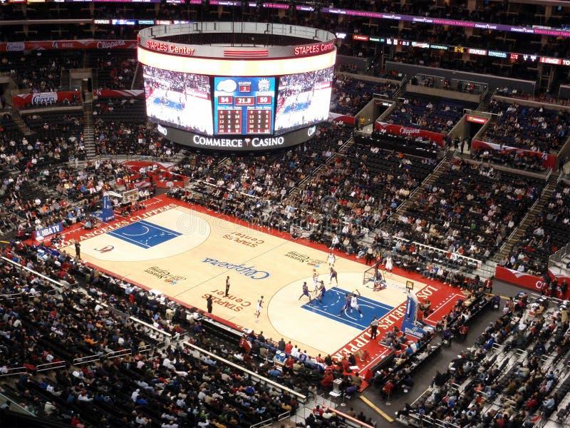 Greif Clippers-Blake hält die oben schauende Kugel an lizenzfreies stockbild