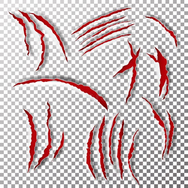Greifer-Kratzer-Vektor Greifer-Kratzer-Kennzeichen Bär oder Tiger Paw Claw Scratch Bloody Zerrissenes Papier stock abbildung