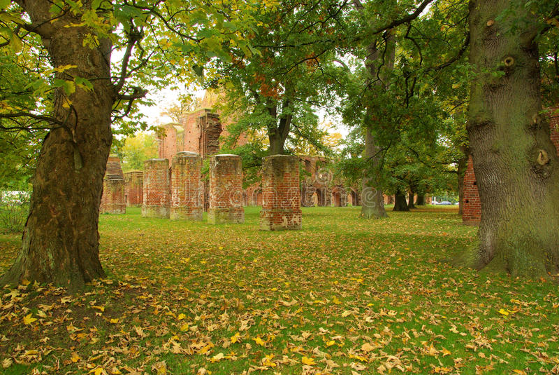 Greifswald修道院 免版税图库摄影