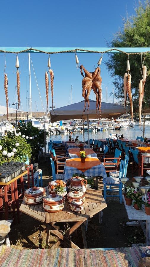 Grekisk restaurang med bläckfiskuttorkning i sol royaltyfria foton