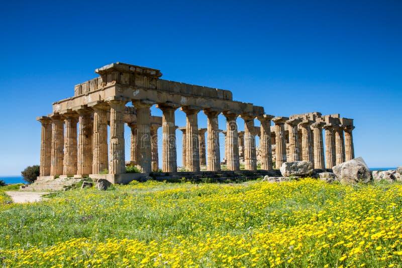 Grekisk tempel på Selinunte fotografering för bildbyråer