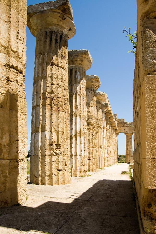grekiskt selinuntesicily tempel arkivfoton