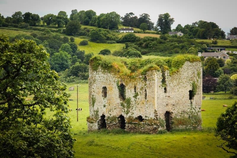 Grennan slott Thomastown ireland royaltyfri foto