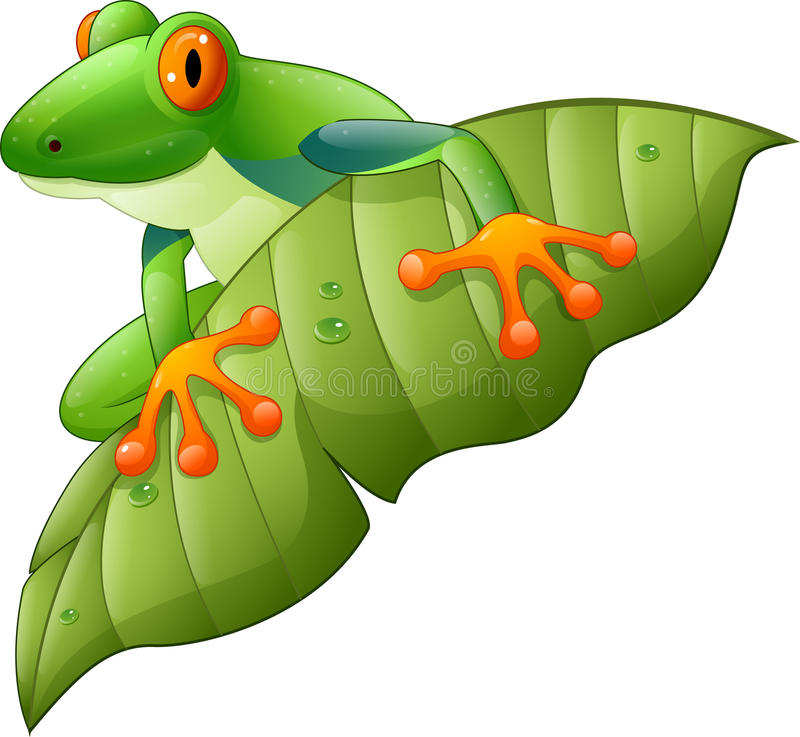 Grenouille d'arbre aux yeux rouges d'Amazone de bande dessinée sur la feuille verte illustration de vecteur