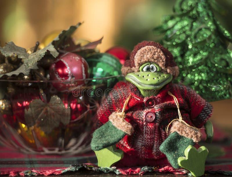 Grenouille de Noël photos libres de droits