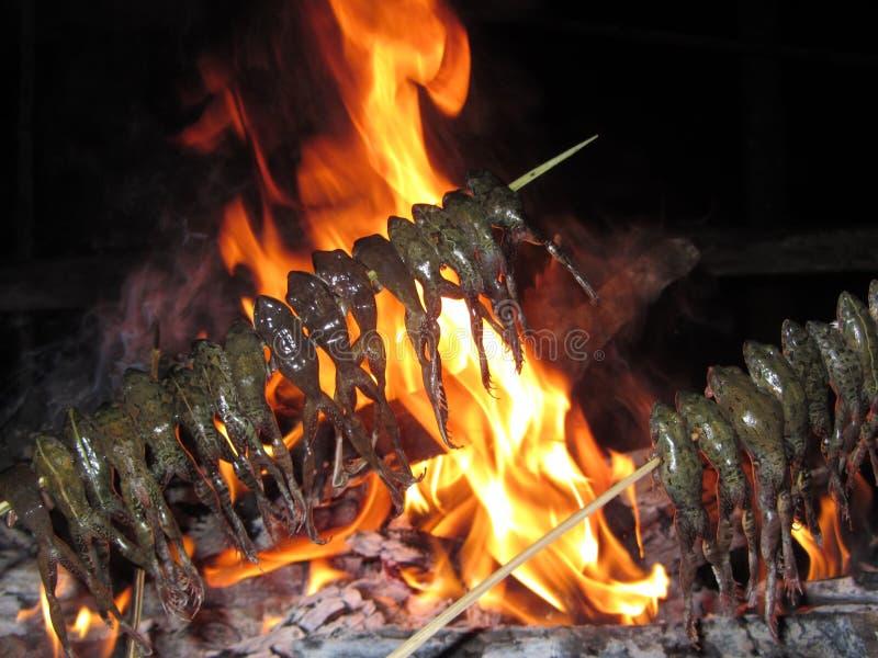 Grenouilles embrochées sur un feu de camp image stock
