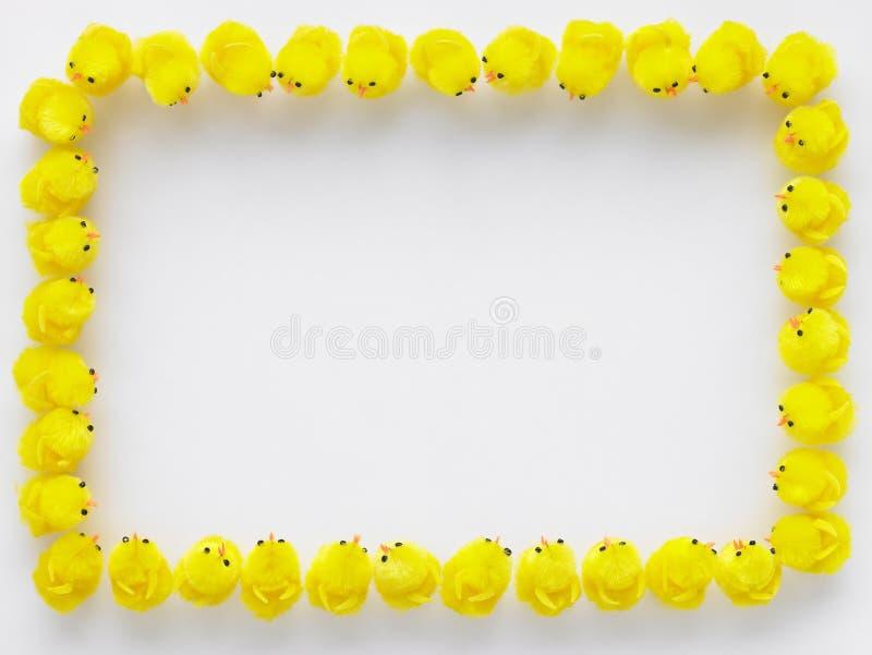 Grens die van de Kuikens van Pasen wordt gemaakt royalty-vrije stock foto