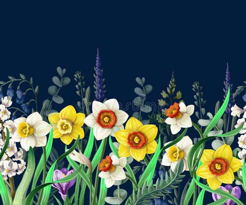 Grens met gele narcissen en wilde bloemen Vector vector illustratie