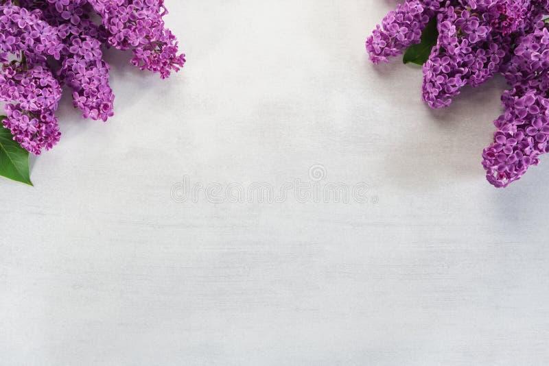 Grens van lilac bloemen op steenachtergrond Hoogste mening royalty-vrije stock afbeeldingen