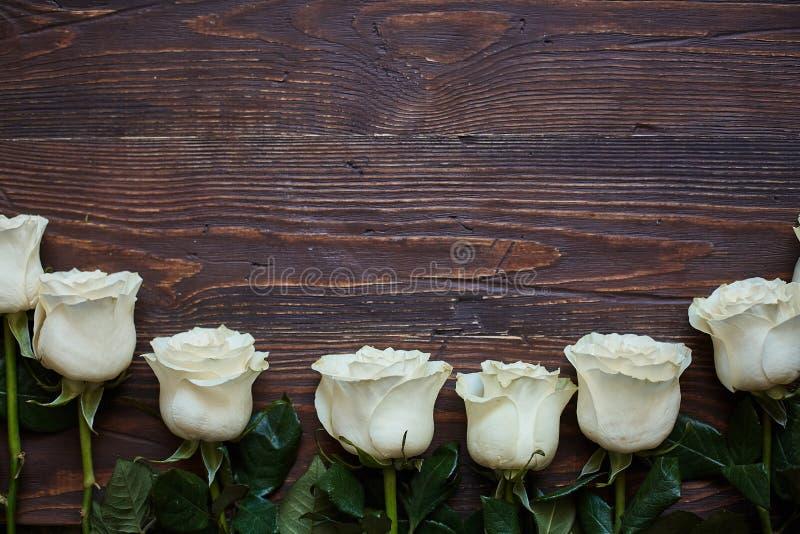 Grens van witte rozen op een donkere houten achtergrond royalty-vrije stock afbeelding