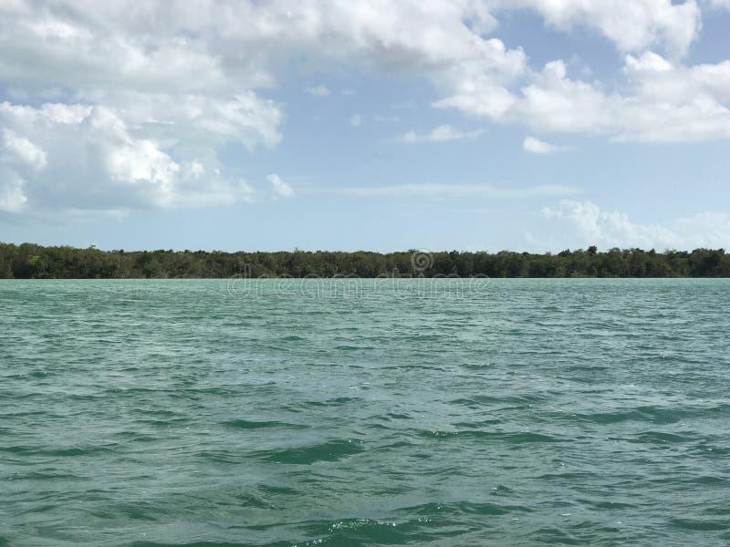 Grenze der Lagune II lizenzfreies stockbild