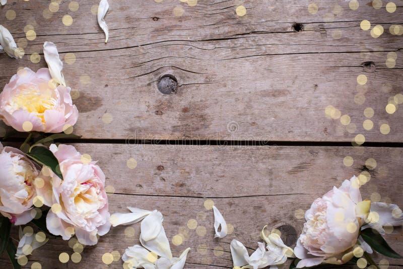 Grenze von den rosa Pfingstrosenblumen und -blumenblättern auf gealtertem hölzernem backg lizenzfreie stockbilder