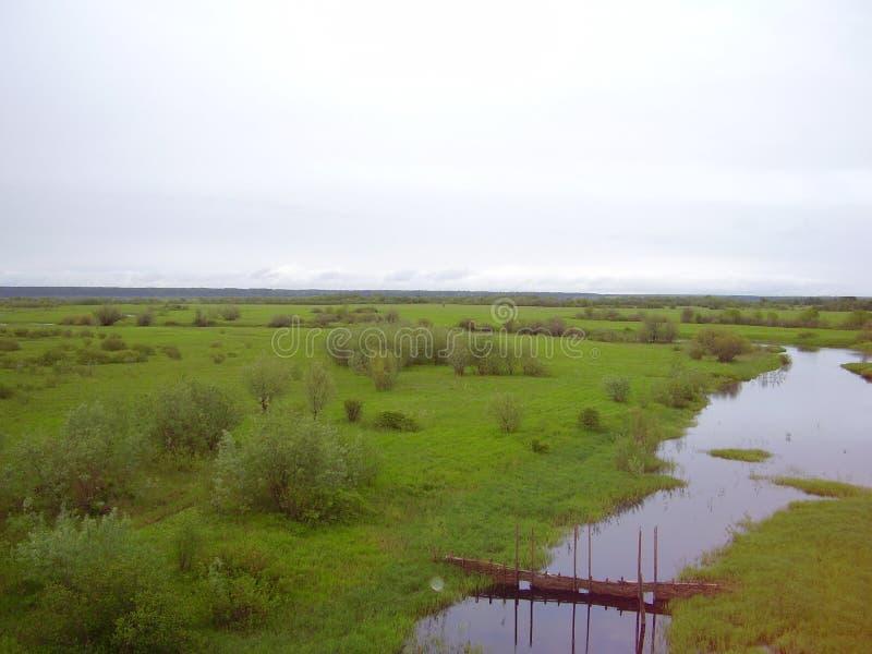 Grenzenlose Grünflächen stockbild