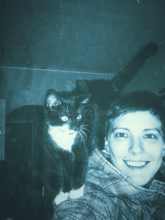 Gressy, goedheid van katten royalty-vrije stock afbeelding