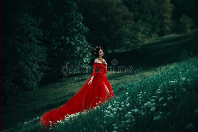 Grevinna i en lång röd klänning arkivfoton