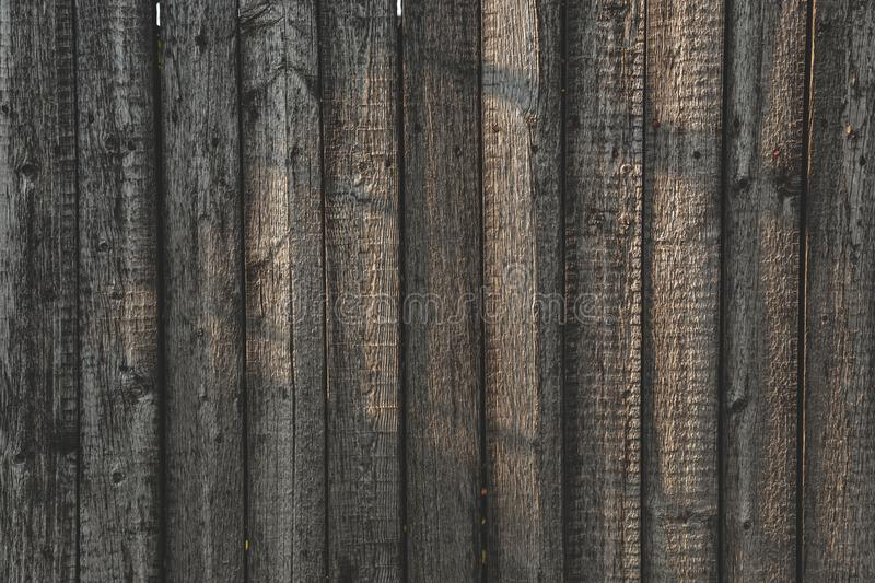 Grey Barn Wooden Wall Planking Wide Texture. Old Solid Wood Slats Rustic Shabby Gray Background. royalty free stock photos