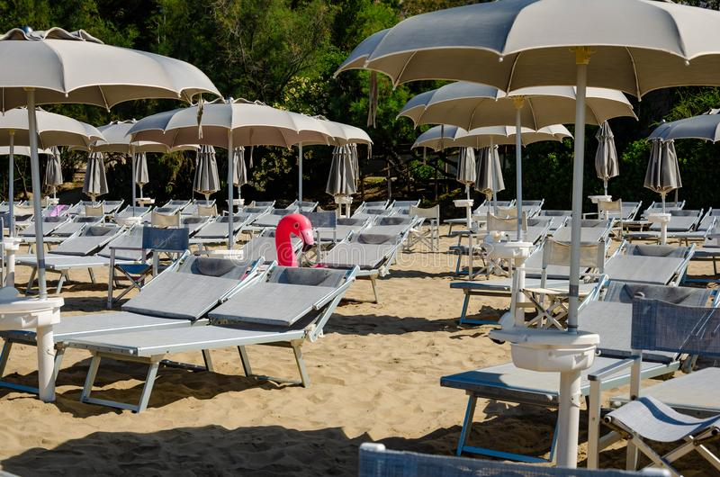 Grey beach umbrellas, chaise longues and inflatable pink flamingo. stock photo