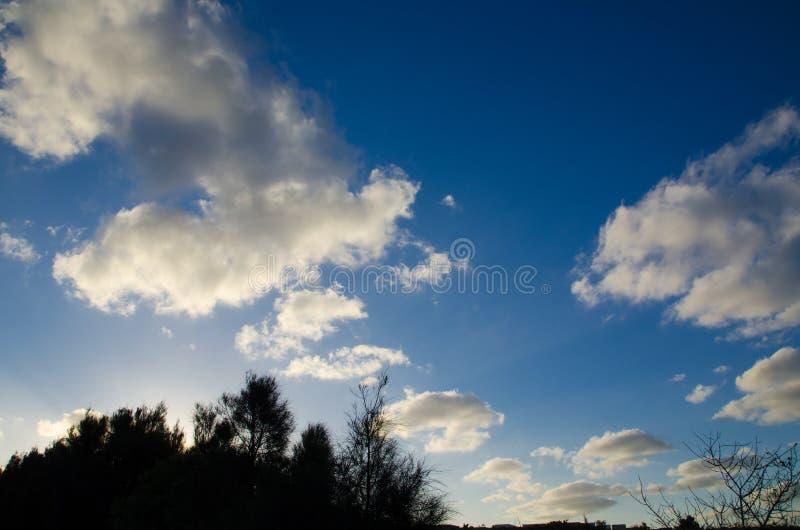 Grey Beautiful Altocumulus som är molnig med blå himmel ovanför busken i solnedgångtid av Sydney Australia arkivfoton