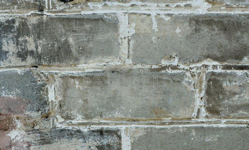 Brick wall. royalty free stock photo