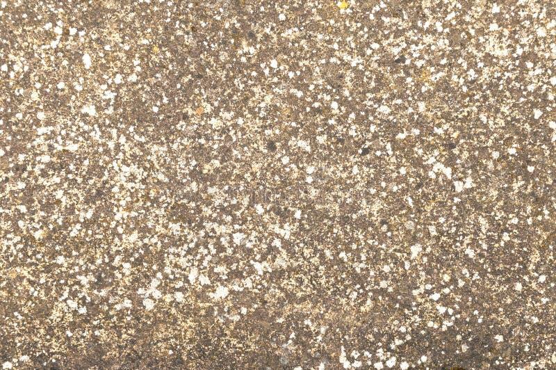 Grey Brown Stone Background chiazzato, lerciume fotografie stock libere da diritti