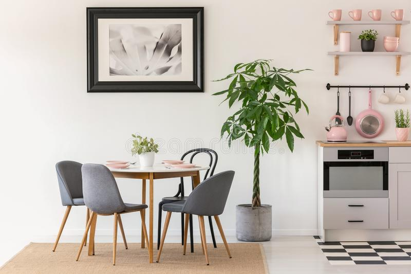 Grey chairs at dining table next to plants in kitchen interior w stock photos