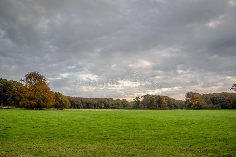 Grey cloudy sky over green field and automn forrest royalty free stock photography
