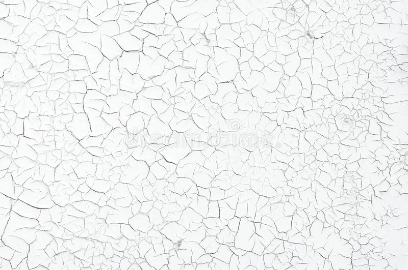 Grey color dry cracked muddy. Earth as a background texture royalty free stock photography