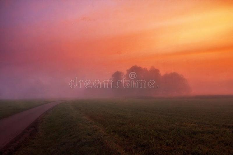 Grey Concrete Road Surrounded by Green Field and Fog royalty free stock photos