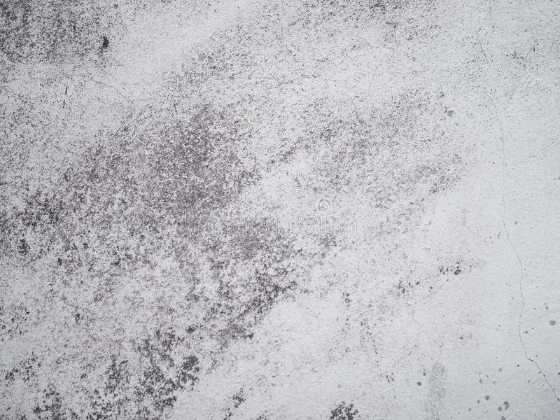 Grey concrete wall for grunge vintage background royalty free stock images