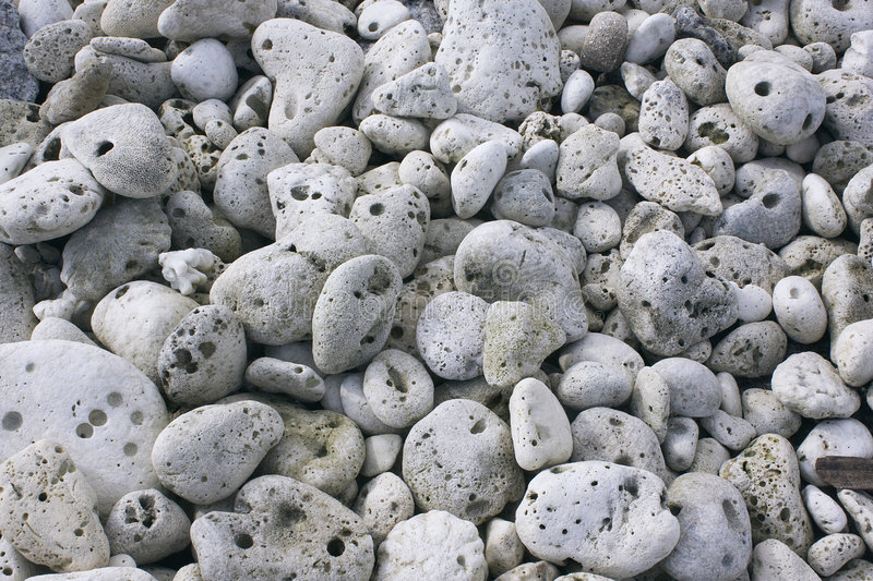 Download Grey coral stones. stock photo. Image of earth, detail - 8045078