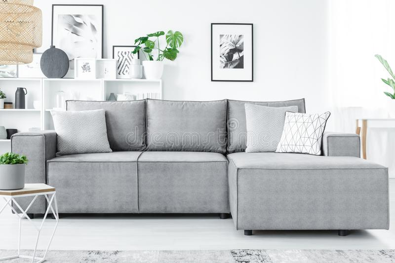 Grey And White Living Room Stock Image Image Of Design 115303977