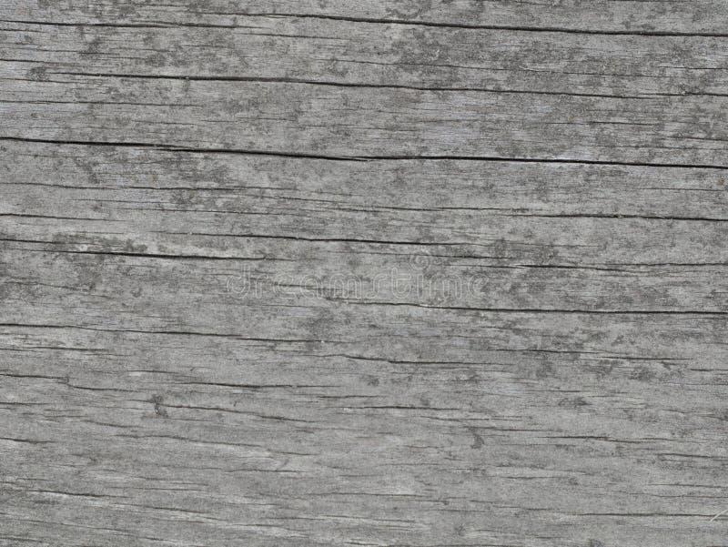 Grey di legno di struttura fotografie stock