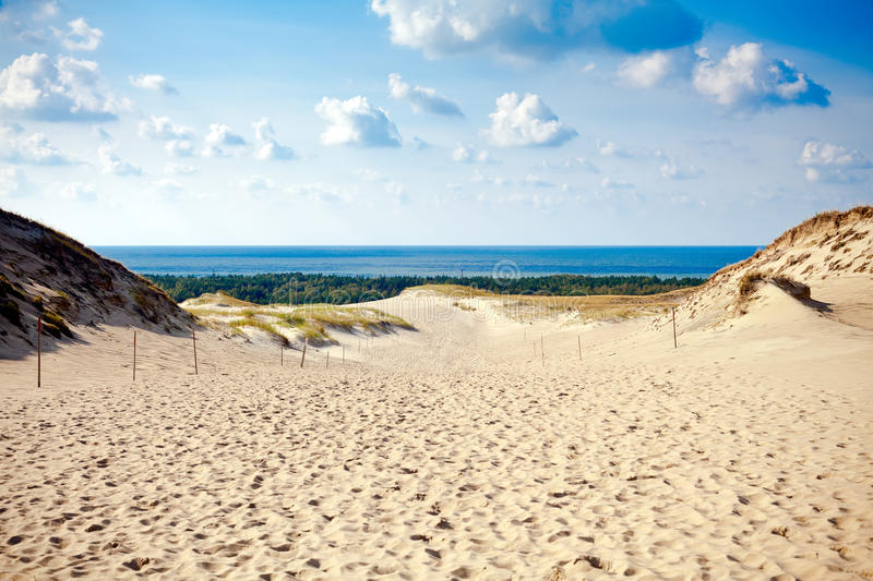 Grey Dunes at the Curonian Spit. View of the Grey Dunes at the Curonian Spit in Nida, Neringa, Lithuania stock image