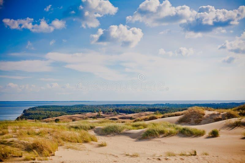 Grey Dunes - Lituânia fotografia de stock royalty free