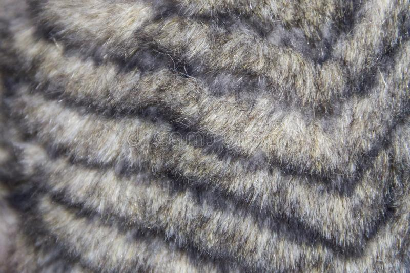 Grey faux fur texture. For background stock images