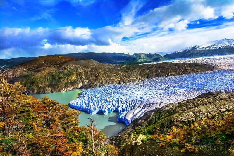 Grey Glacier, Patagonia, Cile, giacimento di ghiaccio patagonian, Cordigliera d fotografie stock
