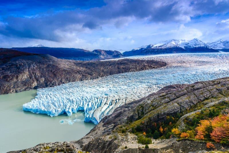 Grey Glacier, Patagonia, Cile, giacimento di ghiaccio patagonian, Cordigliera del Paine fotografie stock libere da diritti