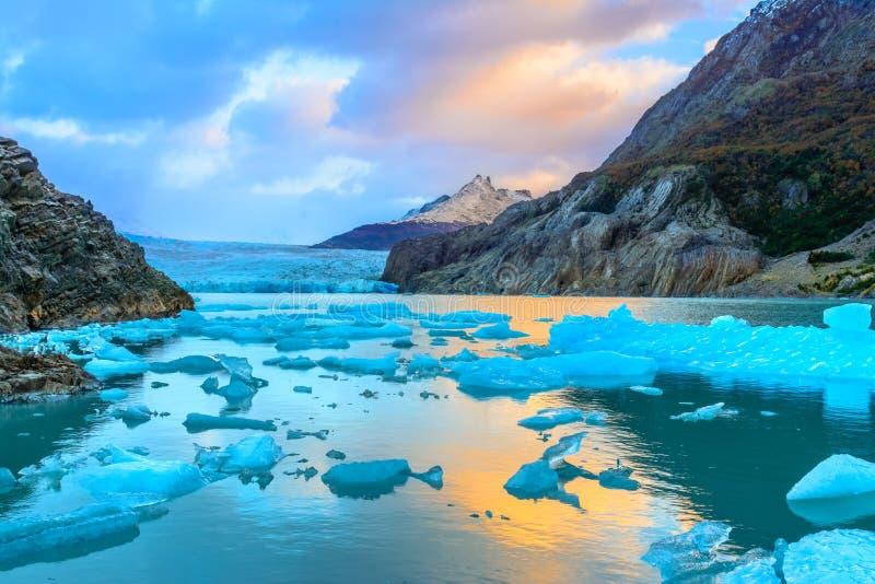 Grey Glacier, Patagonia, Cile, giacimento di ghiaccio patagonian del sud, cuore immagini stock