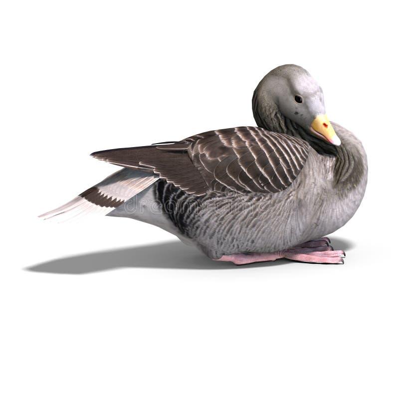 Grey goose stock illustration