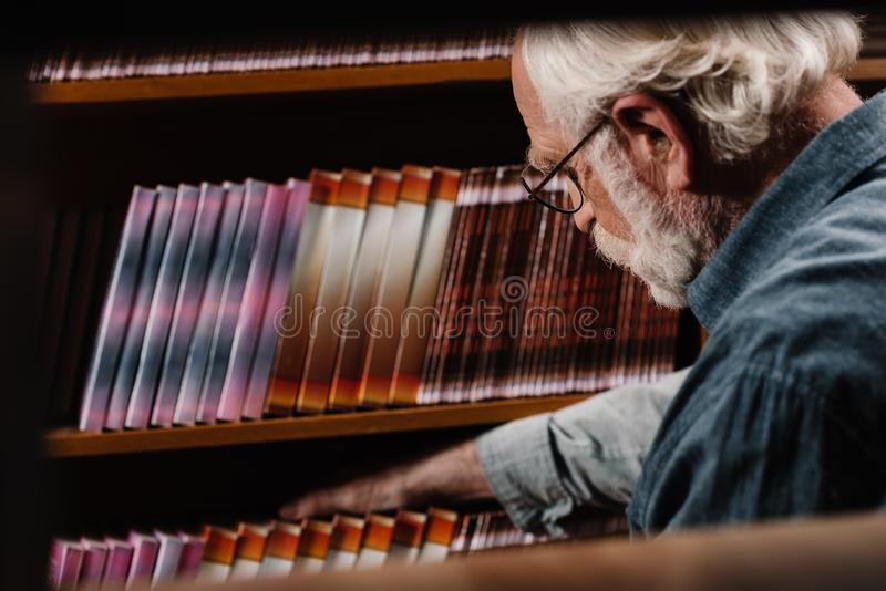 grey hair librarian searching stock photo