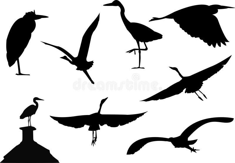 Grey heron silhouettes vector illustration
