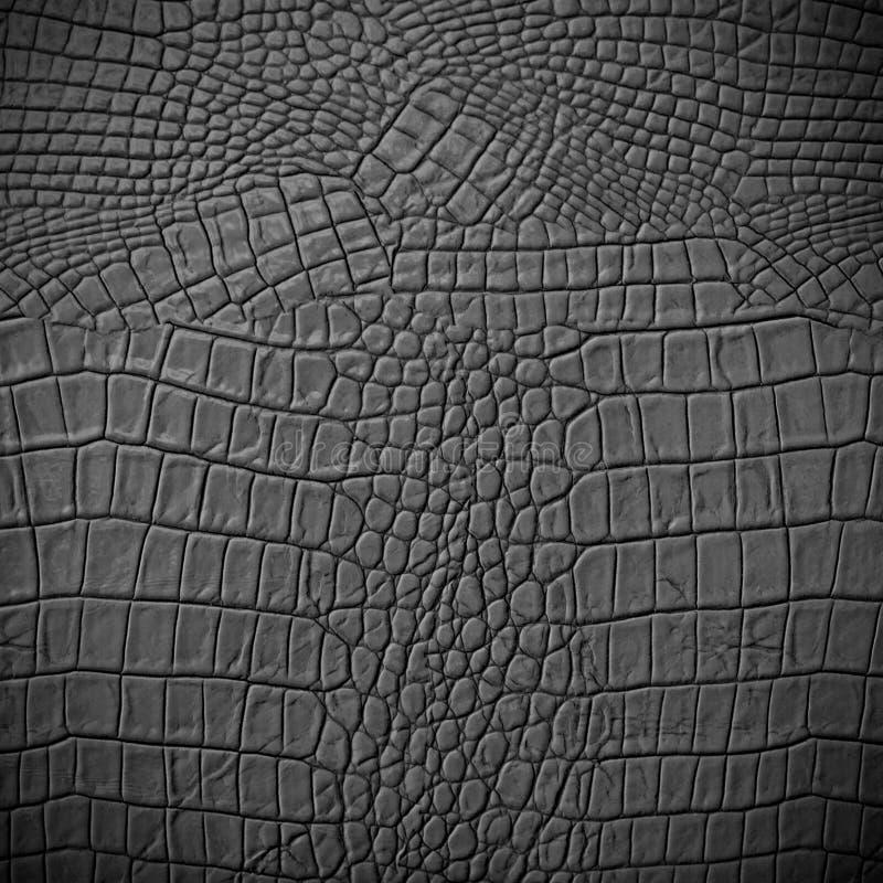 Grey Leather fotografía de archivo libre de regalías