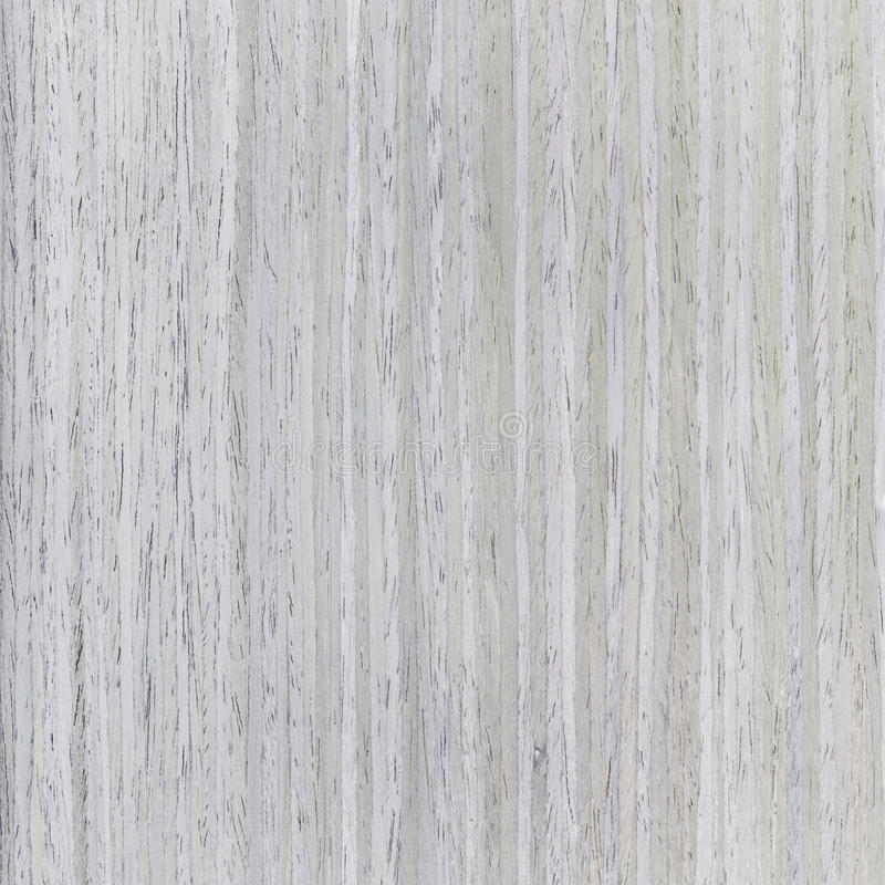 Grey oak background of wood grain. Natural rural tree background royalty free stock image