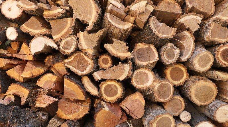 grey pożarniczy światło notuje drewno woodpile obraz stock